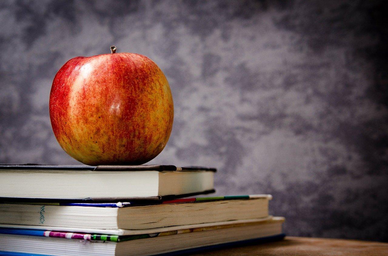 В «Перспективе» прошел книжный праздник. Фото: pixabay.com