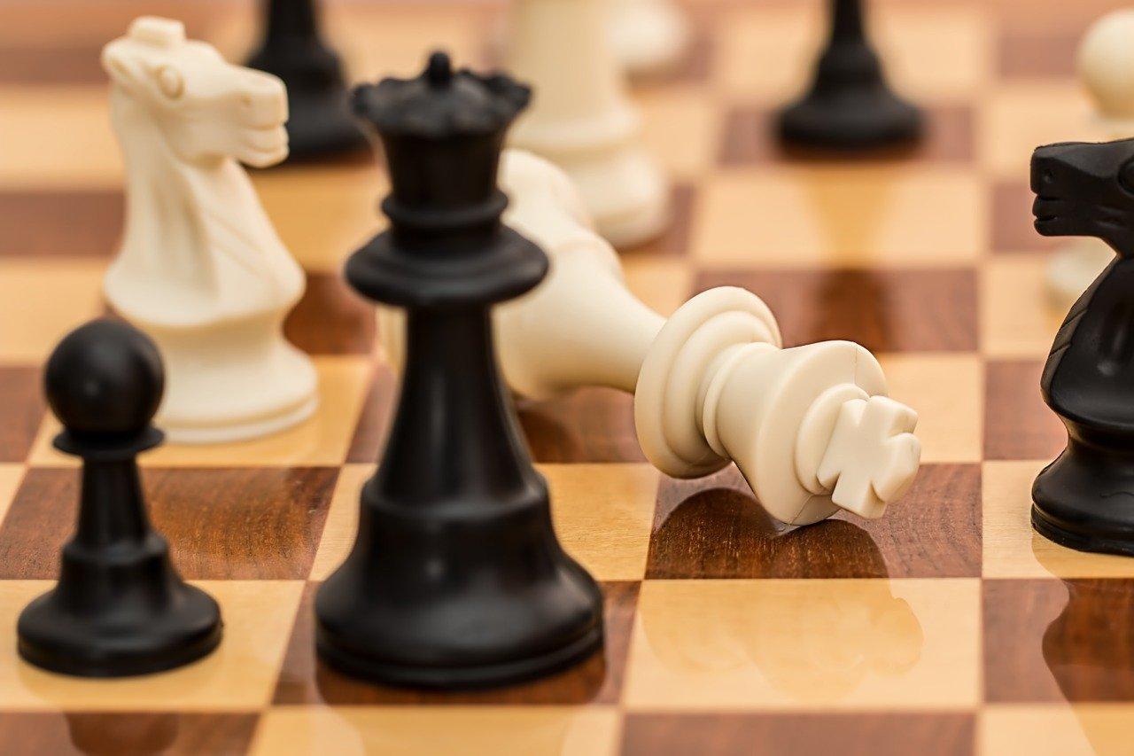 В семейно-досуговом центре на Синявинской открылся набор будущих шахматистов. Фото: pixabay.com