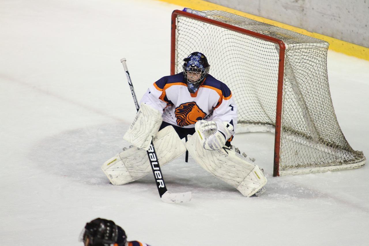 Хоккейный клуб «Молжаниново» сразится с командой «Стрела» в товарищеском матче. Фото: pixabay.com