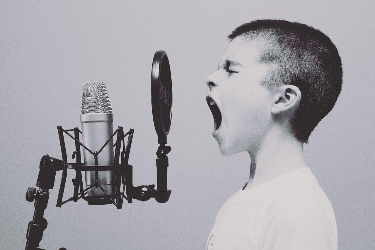 В Культурном центре на Ленинградском шоссе пройдет чемпионат «Открой рот». Фото: pixabay.com