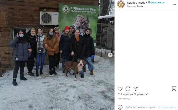Шереметьевскому собачьему приюту помогли студенты Университета транспорта. Фото: скриншот с официального аккаунта Шереметьевского приюта в социальной сети Instagram
