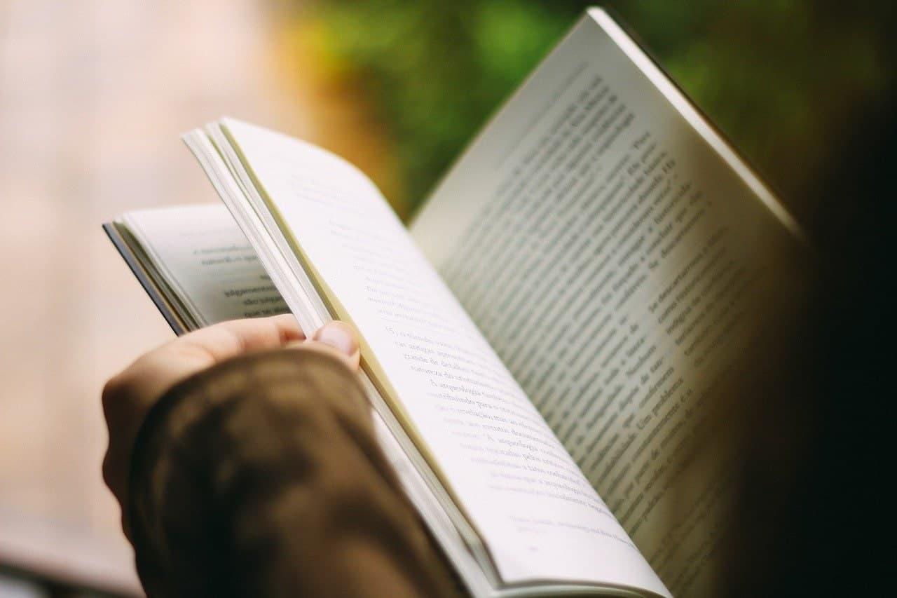 """Школьники из Молжаниновского посетили презентацию книги """"Викинги. История эпохи"""". Фото: pixabay.com"""